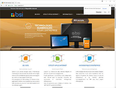 bsi.fr - web site screenshot
