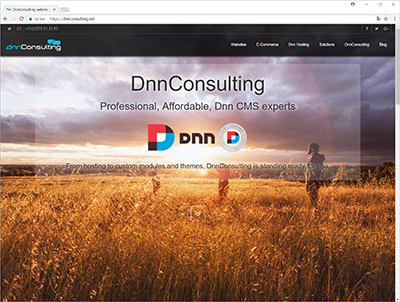 dnnconsulting.net - web site screenshot